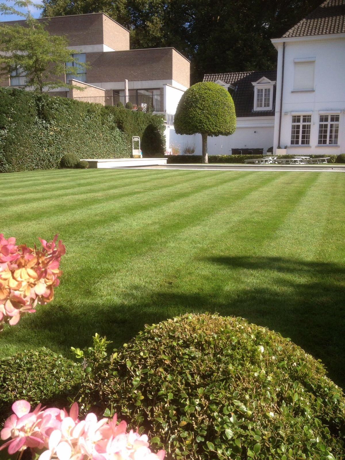 Yc gardens wij cre ren uw droomtuin for Inrichting tuin